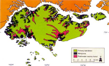 Vegetation Map Of Singapore Compared With That Of - Singapore map 1990